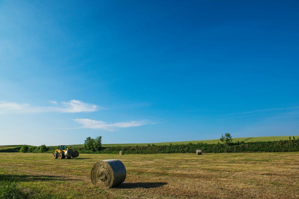 北海道の広大な土地と牧草ロール