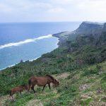 展望台と大自然